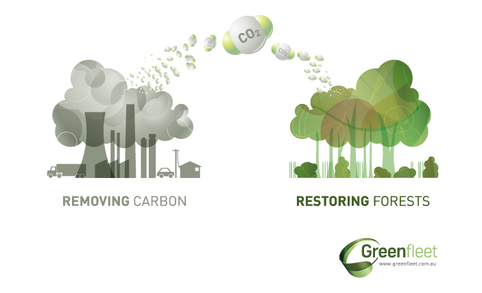 Greenfleet - removing carbon graphic